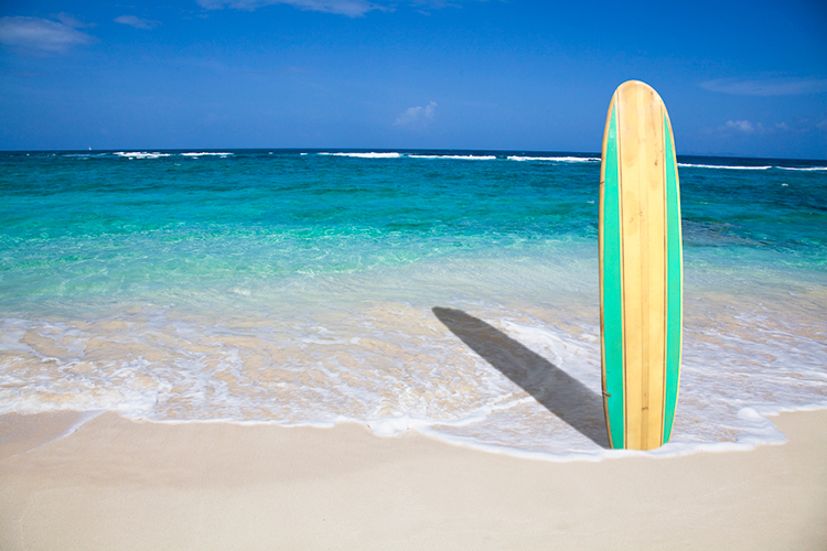 how to choose a surfboard gogglesnmore